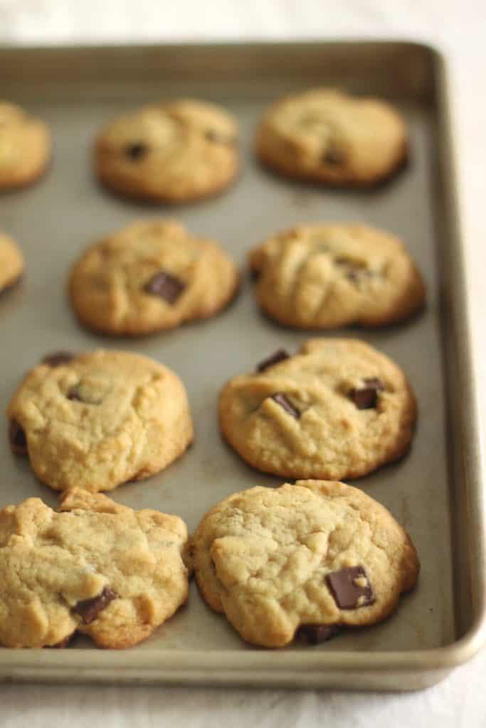 Gluten Free Vanilla Pudding Cookies